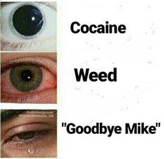 Cocaína, Marijuana, Adiós Mike :'C