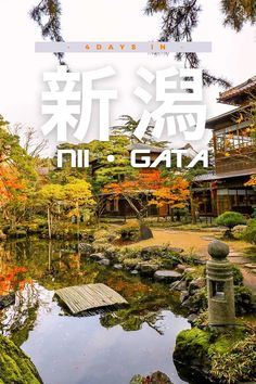 Wanna go to an off-the-beaten-path destination near Tokyo? Head to Niigata and get the most out of this popular Japanese hotspot with this itinerary guide! Tokyo Travel, Asia Travel, Sado Island, Day Trips From Tokyo, Niigata, Amazing Adventures, Where To Go, Travel Around, Travel Inspiration