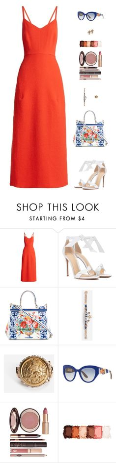"""Untitled #5039"" by mdmsb on Polyvore featuring Rachel Comey, Alexandre Birman, Dolce&Gabbana, Charlotte Tilbury and NYX"