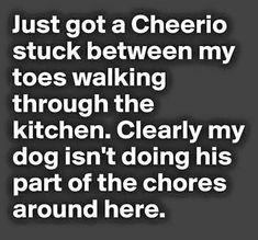 Humor Quotes: Funny Pictures Of The Day - 94 Pics Funny Shit, Haha Funny, Funny Stuff, Funny Things, Random Stuff, Random Humor, Pet Stuff, Random Things, Funny Quotes