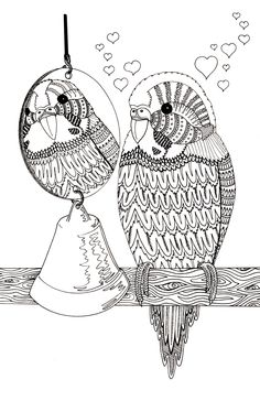 Budgie design for adult colouring in. I am working on getting a book made, so please, if you print it out to try it show it to me :)