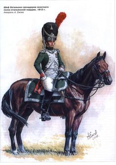 Officer of foot grenadier Italian royal guard Empire, Kingdom Of Italy, French Pictures, Italian Army, National History, Naples, Royal Guard, Total War, French Army