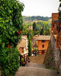 #Italy #Emiliaromagna #Castelvetro #landscape #me#vivomodena #volgomodena #loves_modena #loves_united_modena#modena_dintorni #vivoemiliaromagna #volgoemiliaromagna #likes_emiliaromagna #yallersemilia_romagna #loves_united_emiliaromagna #emiliaromagna_friends #loves_emiliaromagna #ig_emiliaromagna #visititalia #great_captures_italia #ipl_mbr #lory_hdr #italiainunoscatto_hdr #italia_dev#bestborghipics#ig_modena_ #italiatricolore #don_in_italy #total_italy#italywonderful