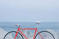 Need a ride? This giveaway's for you! | Pure Fix Cycles