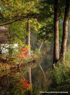 Spreewald im Herbst entdecken