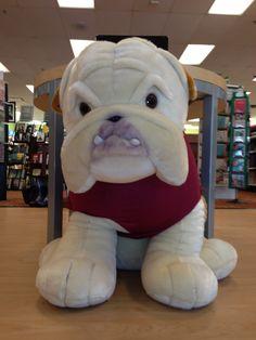 University Of Redlands Mascot