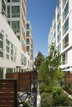 Rooster - Weinstein AU Architects + Urban Designers LLC