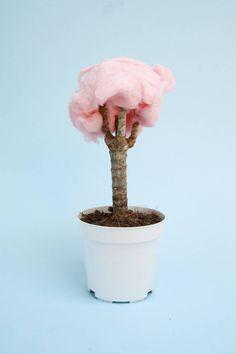 Quirky Interpretations of Everyday Objects – Fubiz Media