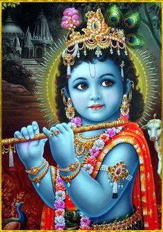 ✨ SHRI KRISHNA ✨http://careforcows.org/Hare Krishna Hare Krishna Krishna Krishna Hare HareHare Rama Hare Rama Rama Rama Hare Hare