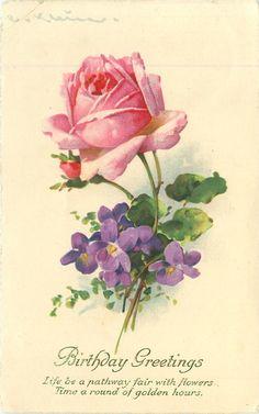 CUMPLEAÑOS SALUDOS rosa rosa y violetas