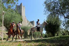 Gentlemen Gentleman, Camel, Horses, Lifestyle, Animals, Animales, Animaux, Gentleman Style, Camels