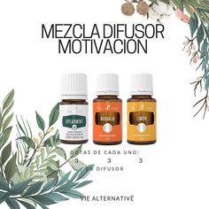 ❋ Mezcla para difusor: motivación Young Living Oils, Young Living Essential Oils, Esential Oils, Diffuser Recipes, Natural Health Remedies, Diffuser Blends, Beauty Recipe, Reiki, Tips