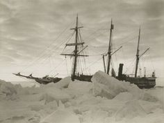 The expedition managed to survive and wondered around the South Pole for 497 days right up to 1917. Description from shahidulnews.com. I searched for this on bing.com/images
