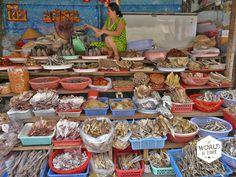 Niet alleen de duizenden vissoorten, maar ook de rijke bodem heeft de Vietnamezen naar dit gebied getrokken #Mekong #Vietnam #vis #vietnamesefood #food