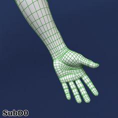 polygonal male body character 3d model