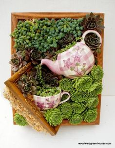 I could not love this gorgeous succulent wall art more! #Succulents #TeaTime #VerticalGarden Via: https://www.facebook.com/Woodward-Greenhouses-196726422230/