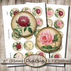 Vintage Rose Illustrations Old Postcard Background by DigiBugs Old Postcards, Vintage Roses, Collage Sheet, Digital Collage, Collages, Circles, A4, Plant, Printables