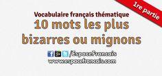 10 mots les plus bizarres ou les plus mignons de la langue française (1)