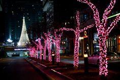 Place Ville-Marie, Montréal à Noël par Susan Moss