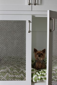 Best diy dog crate furniture built ins ideas – Dog Kennel Metal Dog Kennel, Diy Dog Kennel, Dog Kennels, Kennel Ideas, Animal Room, Built In Dog Bed, Crate Bookcase, Dog Kennel Designs, Dog Crate Furniture