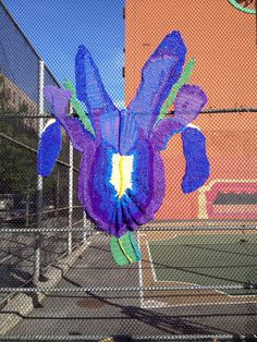 Naomi's Wild Iris Yarnbomb via Guerrilla Girls, Harlem Nyc, Wild Iris, Sidewalk Art, Purple Iris, Yarn Bombing, Environmental Art, Land Art, Flower Photos