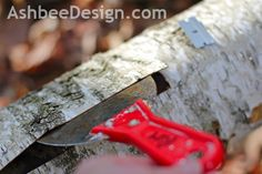 Ashbee Design: Harvesting Birch Bark for Crafts