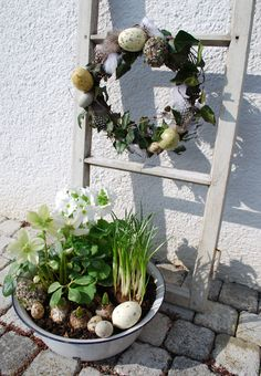 pretty : bucket of spring bulbs + rustic wreath