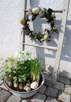 Kranz aus Eiern und Efeu, Dazu Pflanzen wie die Christrose und Frühlingsblühern.