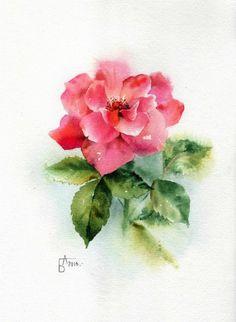 (7) Gallery.ru / Фото #8 - Но больше всех люблю, конечно, розу... - Anneta2012
