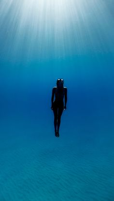 Blue   Blau   Bleu   Azul   Blå   Azul   蓝色   Color   Form   Texture   27MM   Underwater Photography