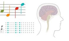The human neocortex learns and recognizes new songs with amazing efficiency. See how it works