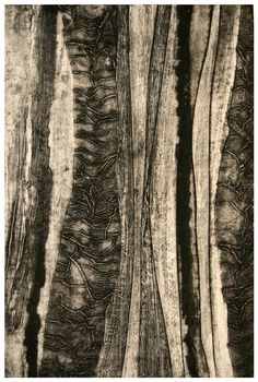 Collargraph is a process invented by Glen Alps in and it is the only printmaking process to be developed strictly as a fine art medium. Collagraph Printmaking, Printmaking Ideas, Artist Portfolio, Art Prints, Block Prints, Textile Art, Fine Art, Drawings, Artwork