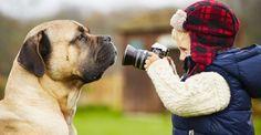 La importancia de tener mascotas en la niñez