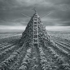 Dariusz Klimczak - Pyramida