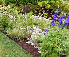When it storms, the water will follow the streambed and pool in the rain garden. Add moisture-loving plants such as delphinium, papyrus, cardinal flower, canna, coneflower, black-eyed Susan, and elephant ear to absorb the collected water.