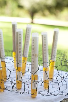 chicken wire to hold favors