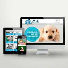 Veterinary Suregon website by Little Sausage Design littlesausagedesign.co.uk