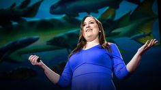 How to win at evolution and survive a mass extinction | Lauren Sallan