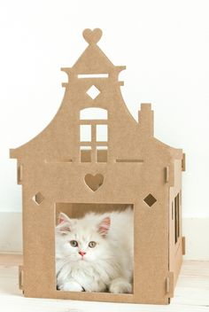 The ultimate cardboard box for cats: Vintage Villa