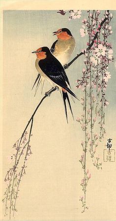 Japanese Art - Ohara Koson - Swallows with Cherry Blossom, 1910 Art And Illustration, Ohara Koson, Art Chinois, Art Asiatique, Art Japonais, Japanese Painting, Japanese Prints, Japan Art, Woodblock Print