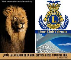 ¿Ya has visitado la nueva web de Lions Club Valencia con una estupenda tienda solidaria? Encontrarás camisetas de Lions CLub y de otras asociaciones con las que colaboramos. Valencia, Lions Club, Animals, Store, T Shirts, Animales, Animaux, Animal Memes, Animal