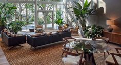 Lots and lots of indoor plants. Lenny Kravitz Designs the Paramount Bay in Miami - ELLE DECOR