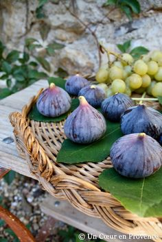 Un Coeur en Provence: fresh figs . Fruit And Veg, Fruits And Vegetables, Fig Recipes, Fresh Figs, Fresh Fruit, Provence France, French Countryside, Fig Tree, French Country Style