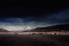 Blue Iceland by Andy Lee