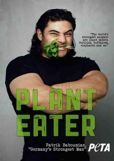 The world's strongest animals are plant eaters. Gorillas, buffaloes, elephants, and me. - Patrik Baboumian, Germany's strongest man