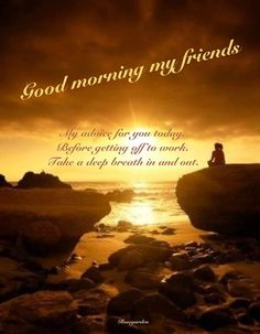 Good morning my friends