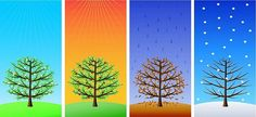Spanish Vocabulary About The Weather - Quiz - AIL Malaga - Spanish Language School, Intensive Courses Seasons Of The Year, Four Seasons, Question Of The Day, This Or That Questions, Spanish Language School, Time Series, Spanish Vocabulary, Near Future, Our World