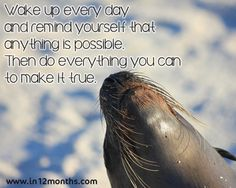 Wake up every day and remind yourself that anything is possible. Then do everything you can to make it true. Anything Is Possible, Do Anything, Inspirational Quotes Pictures, Do Everything, Picture Quotes, Photos, Pictures