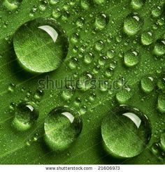Find Close View Water Drops Background stock images in HD and millions of other royalty-free stock photos, illustrations and vectors in the Shutterstock collection. Bubbles Wallpaper, Cute Wallpaper For Phone, Water Drawing, Water Art, Water Drop Quotes, Water Drop Images, Painting Lessons, Painting For Kids, Water Drop Photography