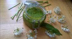 Recipe - wild garlic pesto